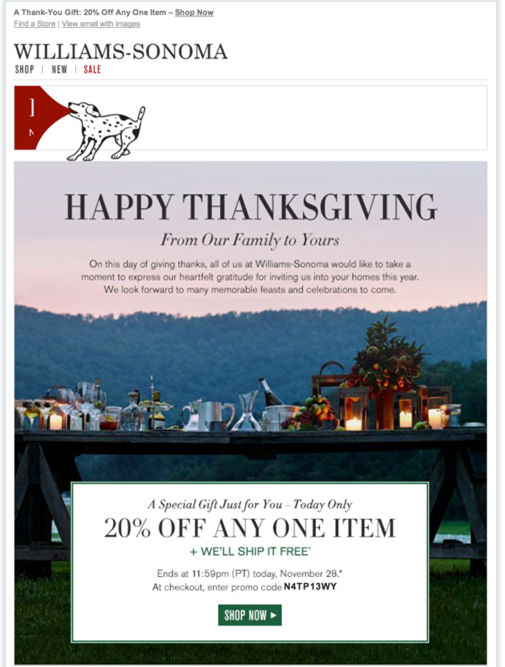Thanksgiving email example from William Sonoma